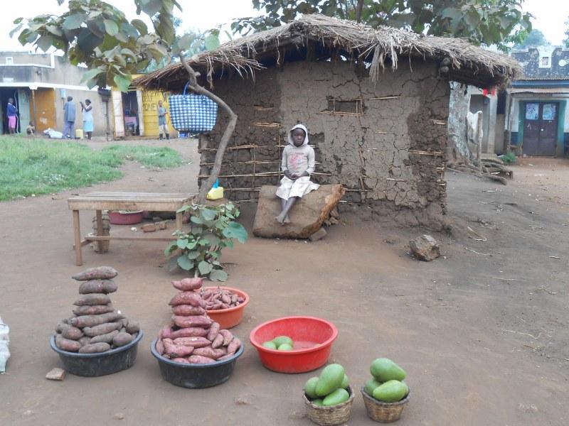 UGANDA 195_800x600