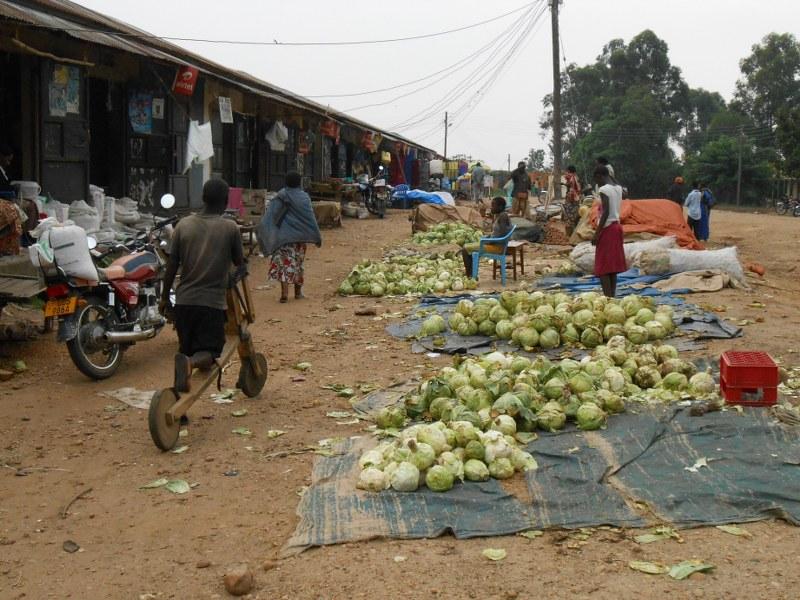 UGANDA 358_800x600