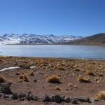 BOLIVIA CILE ISOLA DI PASQUA 384_800x600