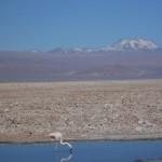 BOLIVIA CILE ISOLA DI PASQUA 429_800x600