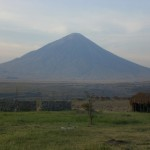 TANZANIA GIANL 018_800x600