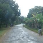 TANZANIA GIANL 276_800x600