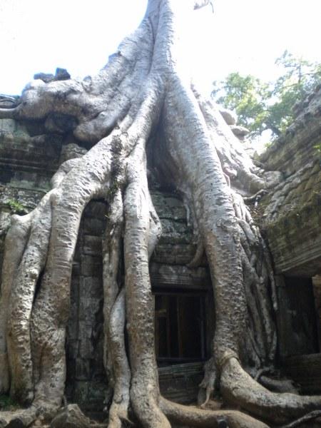 cambogia-vietnam 043_450x600