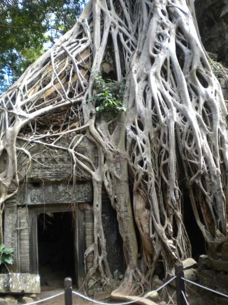 cambogia-vietnam 065_450x600