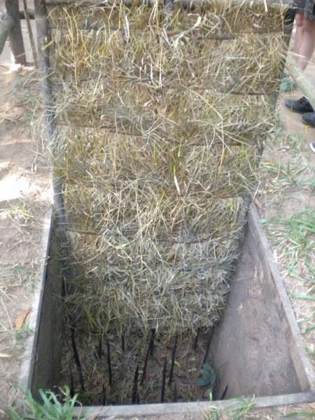 cambogia-vietnam 337_450x600