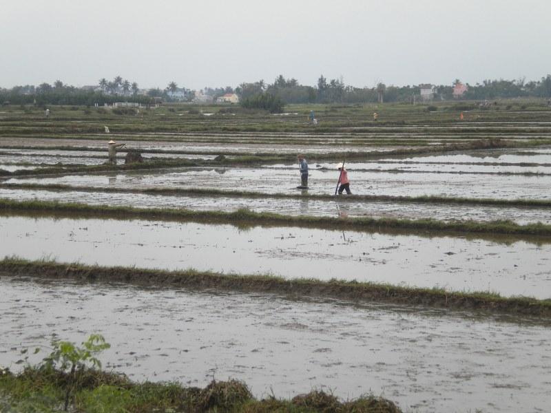 cambogia-vietnam 466_800x600