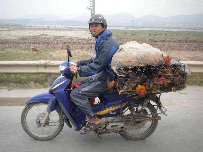 cambogia-vietnam 915_800x600