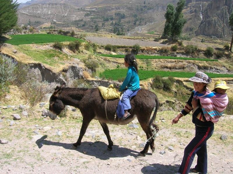 perù 2006 234_800x599