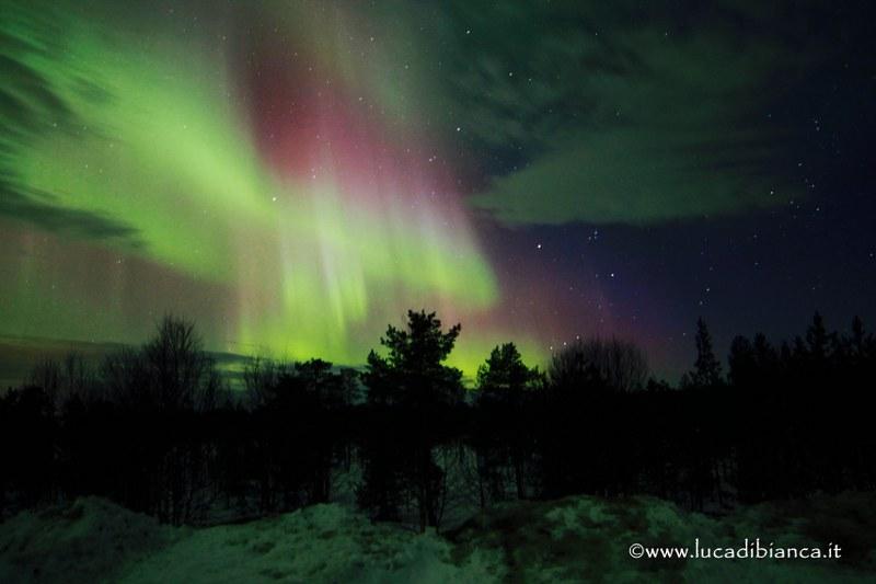 aurora www_800x533
