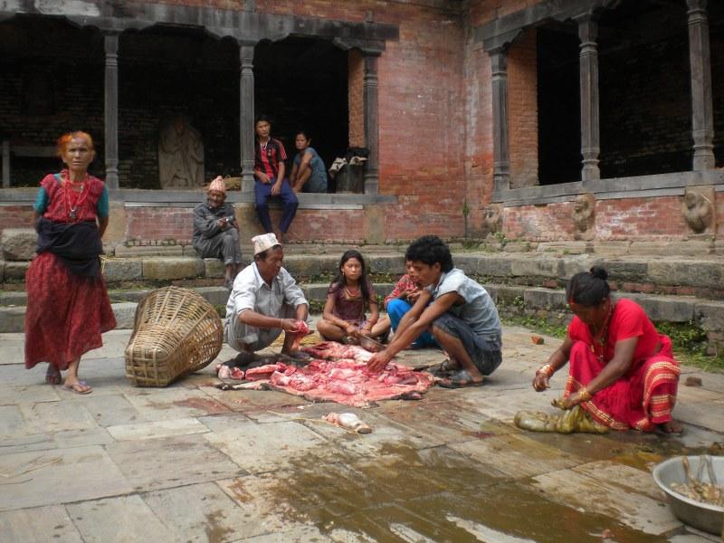 nepal-india 098_800x600