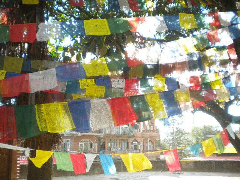 nepal-india 277_800x600