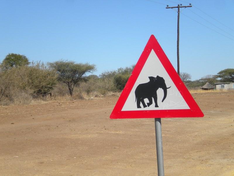 africa 154_800x600